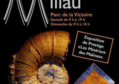 48ème Bourse Exposition Internationale Minéraux et Fossiles