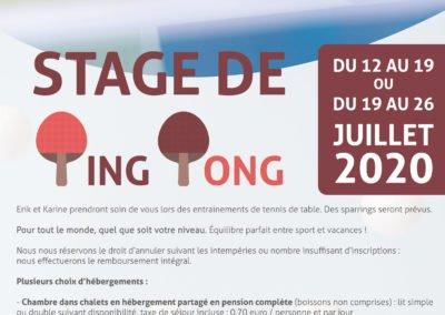 Stage de Tennis de table au mois de Juillet 2020