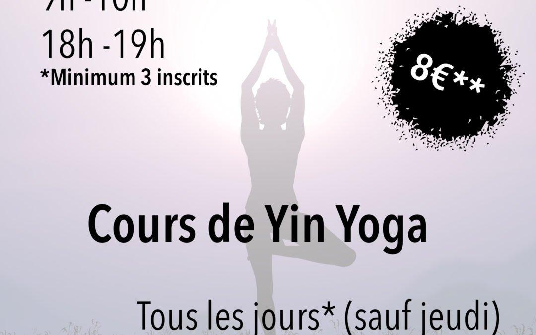 Cours de Yoga Vinyasa et cours de Yin Yoga